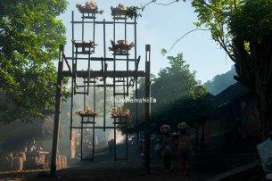 Pagi di Desa Tenganan...