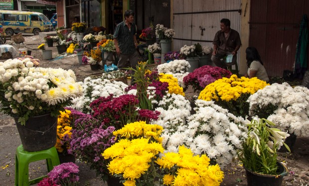 one corner of the traditional flower market