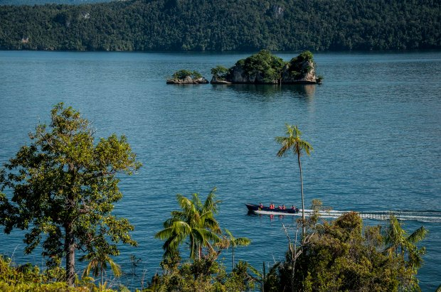 Kaimana, which is located in the southern region of  bird's head, West Papua. Dealing directly with the Arafura Sea, which has a high biodiversity